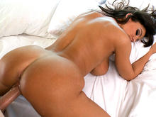 Lisa Ann's Ass Gets Anal Sex